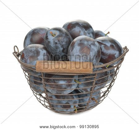 Fresh Prunes