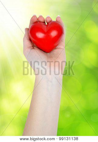 heart in hand