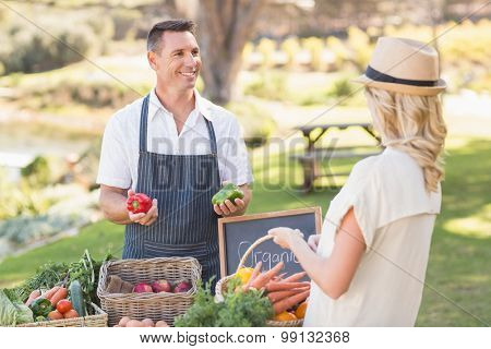 Farmer discussing with a customer at the local market