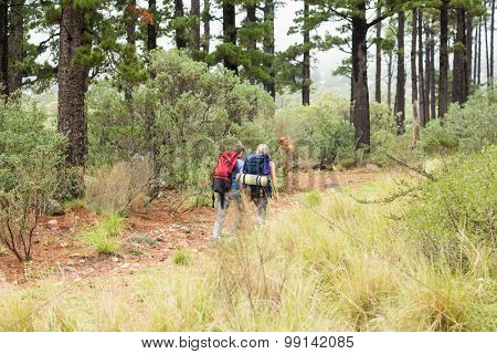 Young hiker couple hiking in the nature