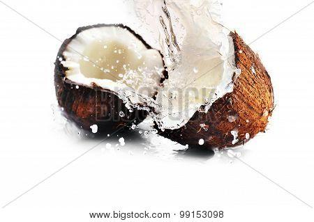 Cracked Coconut With Splash
