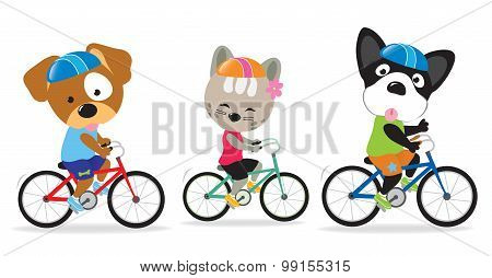 Cat and dogs riding bikes