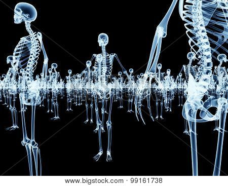 Army Of Skeletons Isolated On Black