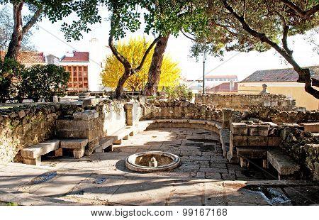 Small Garden In Castle  Of Sao Jorge