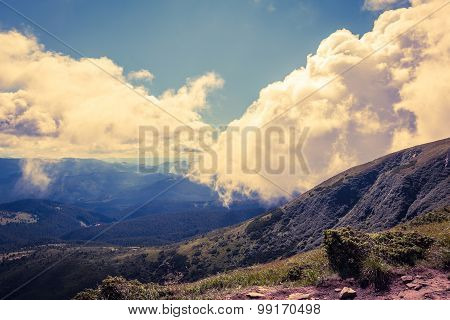 Summer Landscape In Carpathians