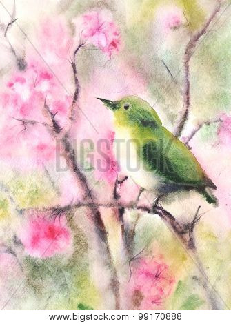 Water Color Drawing Of A Small Green Bird