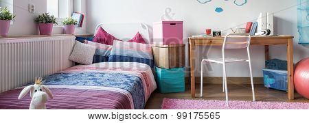 Functional Room With Sleeping Area