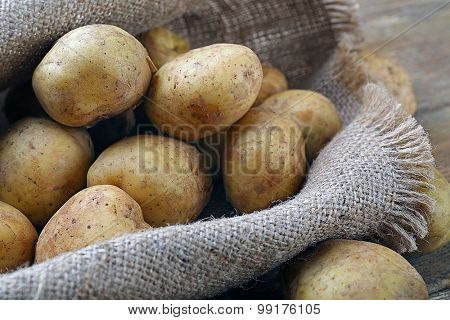 Young potatoes on sackcloth close up