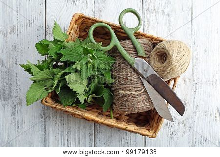 Leaves of lemon balm with rope and scissors in wicker basket on wooden background