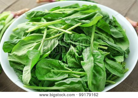 Bowl of fresh spinach leaves, closeup