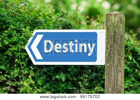 Direction Arrow, Sign To Destiny in Blue Color