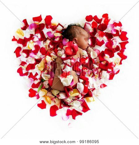 Black Newborn Baby Sleeping In Flowers.