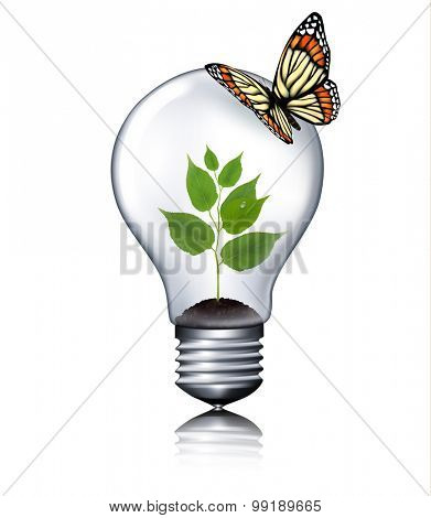 Eco light bulb with a butterfly. Vector.