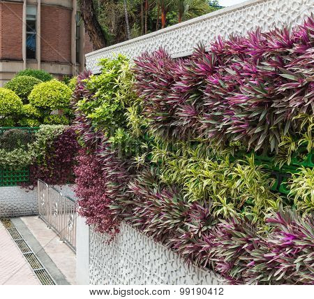Beautiful Vertical Garden In The Center Of Kuala Lumpur