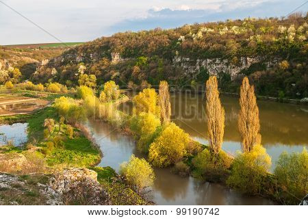 Spring forest next to a river and limestone cliffs