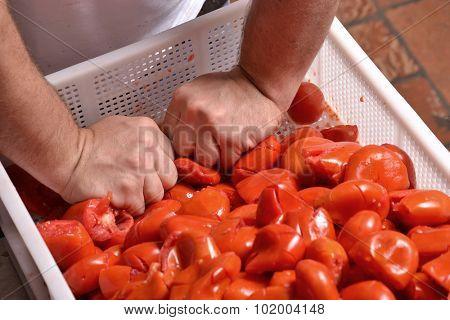Cook hands squeezing tomato preparing sauce.