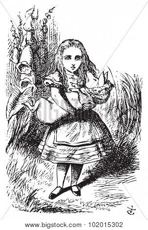 Alice and the pig baby - Alice's Adventures in Wonderland original vintage engraving.This time there could be no mistake about it: it was neither more nor less than a pig...