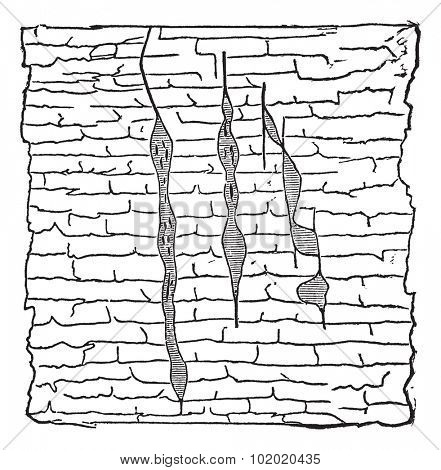 Geological Vein, illustration showing vertical gash veins of lead ore (shaded) within galena (unshaded), vintage engraved illustration. Trousset encyclopedia (1886 - 1891).