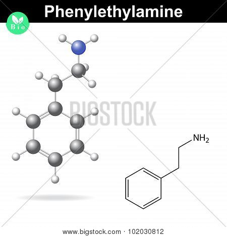 Phenylethylamine Molecule