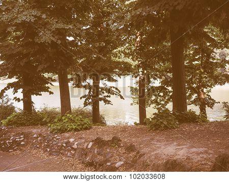 Retro Looking River Po In Turin