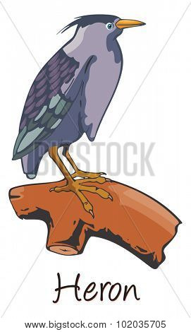 Heron, Perched on a Branch, Color Illustration