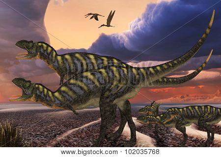 Aucasarus Dinosaurs