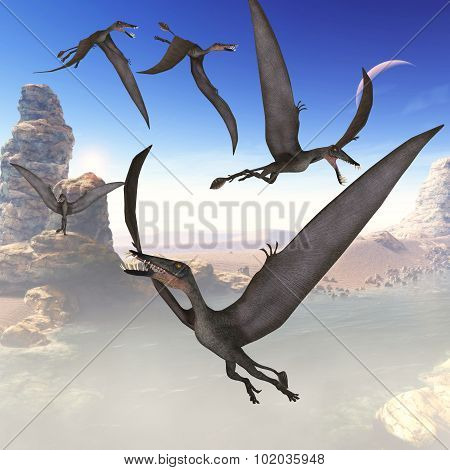 Dorygnathus Flying Reptiles