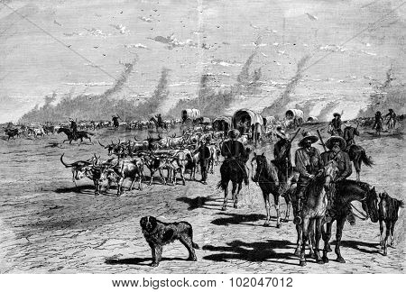 The Boers. A large convoy of horse, vintage engraved illustration. Journal des Voyage, Travel Journal, (1880-81).