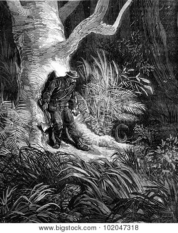 Lost in the jungle. He saw a raccoon crouched in the grass, vintage engraved illustration. Journal des Voyages, Travel Journal, (1879-80).