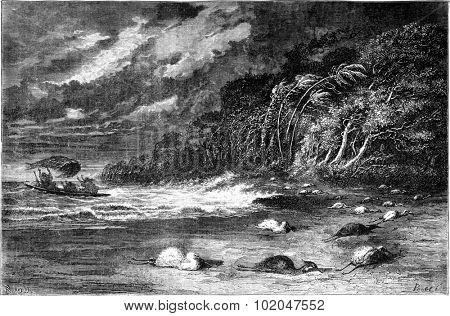 Gale on the Ucayali River, vintage engraved illustration. Le Tour du Monde, Travel Journal, (1865).