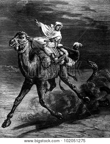 Female odyssey. The huge snake haste to race in pursuit of camel, vintage engraved illustration. Journal des Voyages, Travel Journal, (1880-81).
