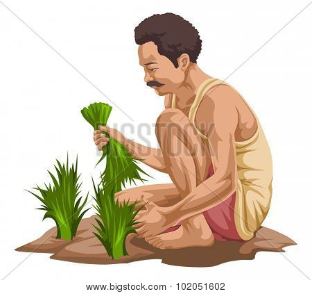 Vector illustration of farmer plucking vegetables in farm.