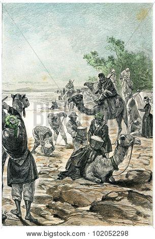 Zach Fren to renew our supply of salt, vintage engraved illustration. Jules Verne Mistress Branican, 1891.