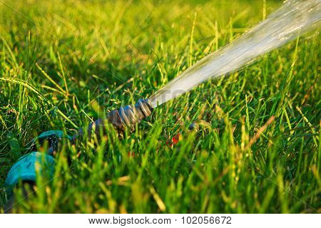 Garden watering. Flow of water pouring out of pipe in fresh green grass with spot of sunlight on bac