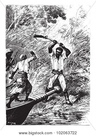 But giant fair turn his gun like a club, vintage engraved illustration.