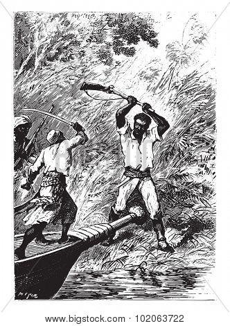 But giant fair turn his gun like a club, vintage engraved illustration.