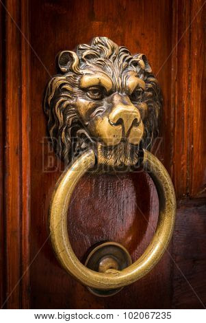 Lion Head Door Knocker Ancient Knocker