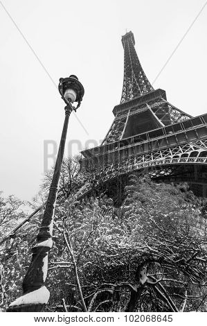Eiffel Tower Under The Snow