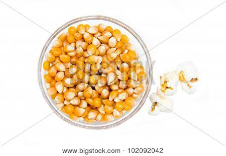 Maize grain dried with popcorn next top