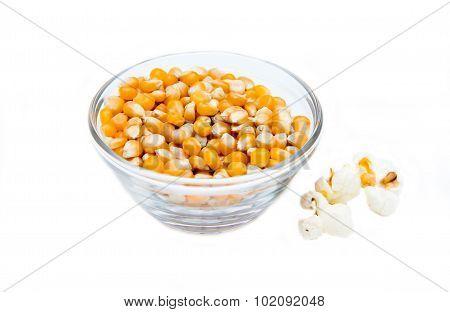Maize grain dried with popcorn next
