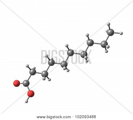 Decanoic - capric acid - is a saturated fatty acid. 3d illustration