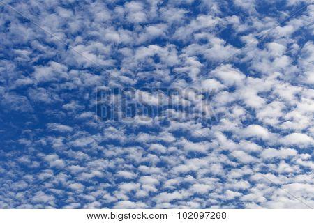 Altocumulus Clouds In Sunny Day