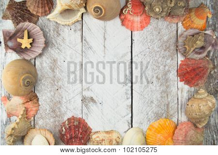Sea shell frame on wooden background