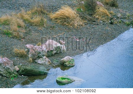 River Bank With Small Stones And Grass Waving In The Wind