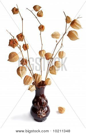 Romantic Bouquet Of Dry Flower