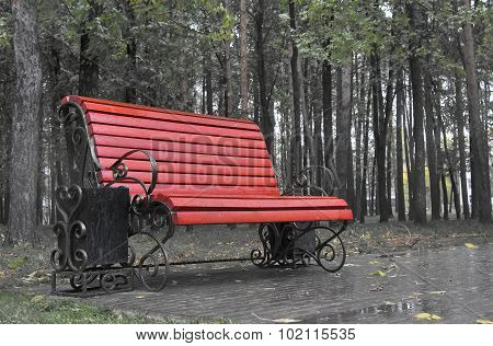 Photo of a Bench in a rainy park