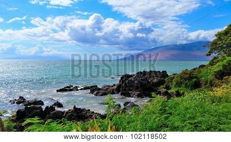 Tropical Maui Hawaii Beach Scene
