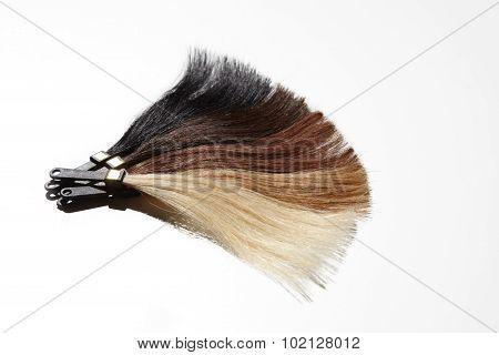 Hair Samples Fan