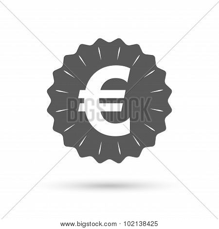 Euro sign icon. EUR currency symbol.
