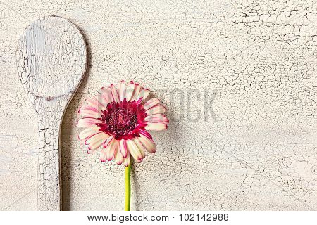 Wooden Kitchen Spoon And Flower On Wooden Background